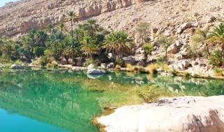 Le acque color smeraldo della Wadi di Bani Khalid