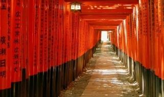 Viaggio in Giappone - vista prospettica all'interno di un tempio
