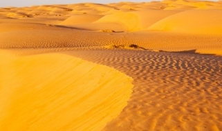 Le spettacolari dune a perdita d'occhio del Wahiba Sands