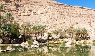 Una tappa da non perdere in un tour dell'Oman: Wadi Bani Khalid