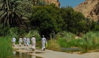 Tour Oman: la natura lussureggiante di Wadi Bani Khalid