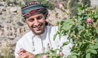 Un agricoltore omanita intento nella raccolta dei petali di rosa