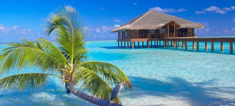 Meeru island resort originaltour tour operator for Soggiorno alle maldive