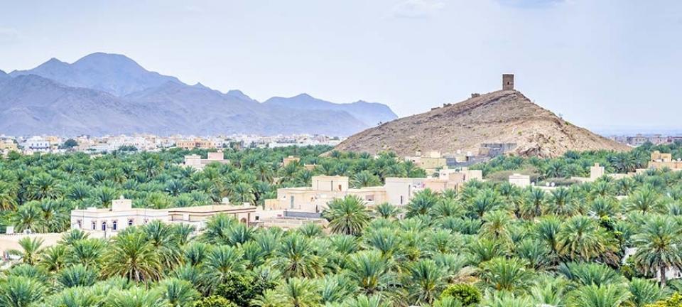Tour di gruppo Oman - paesaggio omanita