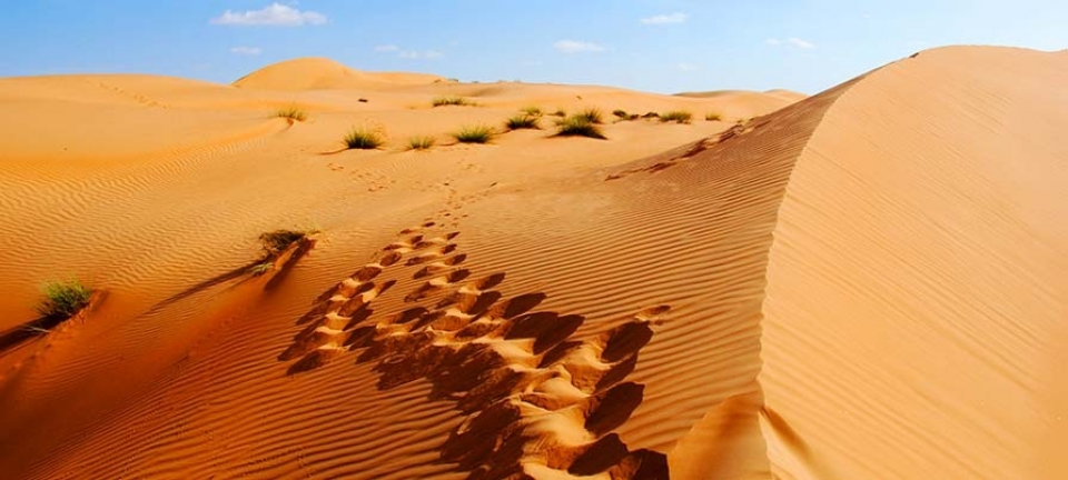 Tour Oman 2020 nel deserto