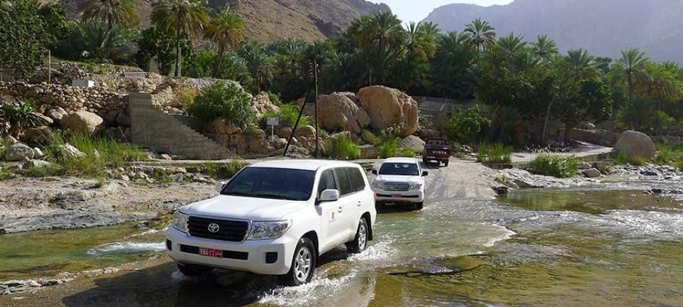Tour di gruppo Oman - Fuoristrada presso wadi